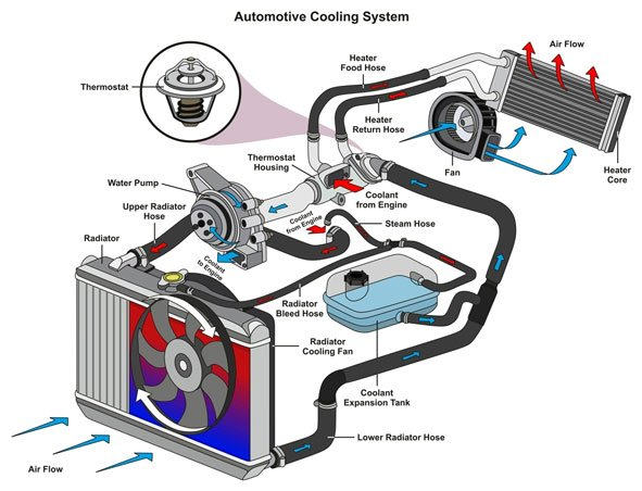 how does the cooling system work
